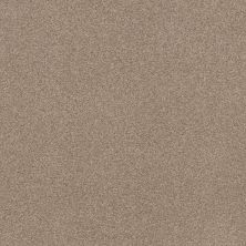 Shaw Floors Value Collections Cozy Harbor I Net Natural Beauty 00721_5E364