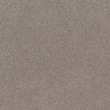 Shaw Floors Value Collections Cozy Harbor I Net Stucco 00724_5E364