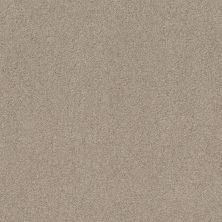 Shaw Floors Value Collections Cozy Harbor I Net Sandstone 00743_5E364