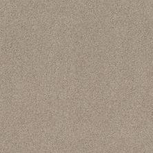 Shaw Floors Value Collections Cozy Harbor I Net Sandstone 00743_5E364