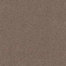 Shaw Floors Value Collections Cozy Harbor I Net Tumbleweed 00749_5E364