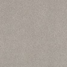 Shaw Floors Value Collections Cozy Harbor II Net Baltic Stone 00128_5E365