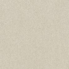 Shaw Floors Value Collections Cozy Harbor II Net Delicate Cream 00156_5E365