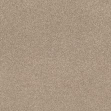 Shaw Floors Value Collections Cozy Harbor II Net Natural Beauty 00721_5E365
