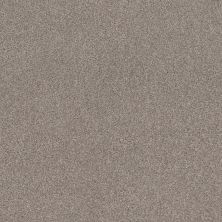 Shaw Floors Value Collections Cozy Harbor II Net Stucco 00724_5E365