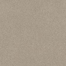 Shaw Floors Value Collections Cozy Harbor II Net Sandstone 00743_5E365