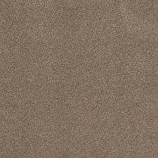 Shaw Floors Value Collections Cozy Harbor II Net Tumbleweed 00749_5E365