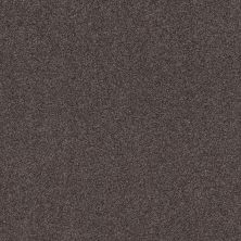 Shaw Floors Value Collections Cozy Harbor II Net Burma Brown 00752_5E365