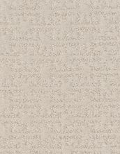 Shaw Floors Value Collections Zenhaven Net Delicate Cream 00156_5E366