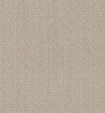 Shaw Floors Value Collections Zenhaven Net Sandstone 00743_5E366