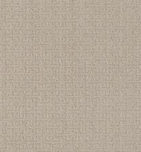 Shaw Floors Caress By Shaw Zenhaven Net Sandstone 00743_5E366