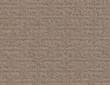 Shaw Floors Caress By Shaw Zenhaven Net Tumbleweed 00749_5E366