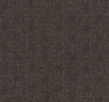 Shaw Floors Value Collections Zenhaven Net Burma Brown 00752_5E366