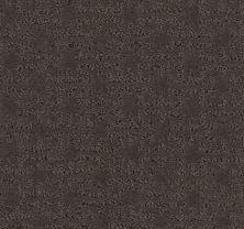Shaw Floors Caress By Shaw Zenhaven Net Burma Brown 00752_5E366