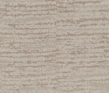 Shaw Floors Value Collections Winter Solace Net Baltic Stone 00128_5E369