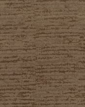 Shaw Floors Caress By Shaw Winter Solace Net Raw Wood 00720_5E369