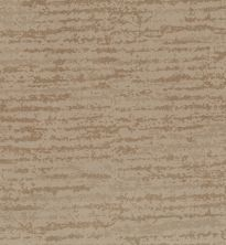 Shaw Floors Caress By Shaw Winter Solace Net Natural Beauty 00721_5E369