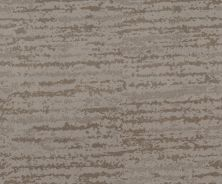 Shaw Floors Caress By Shaw Winter Solace Net Stucco 00724_5E369