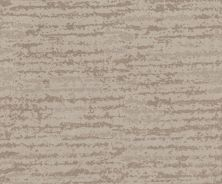Shaw Floors Caress By Shaw Winter Solace Net Sandstone 00743_5E369