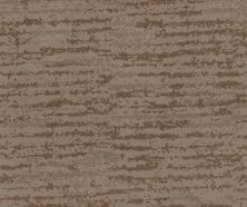 Shaw Floors Caress By Shaw Winter Solace Net Tumbleweed 00749_5E369