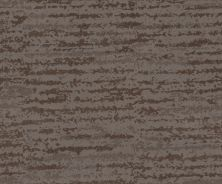 Shaw Floors Caress By Shaw Winter Solace Net Ridgeview 00751_5E369