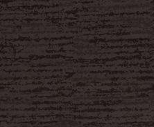 Shaw Floors Caress By Shaw Winter Solace Net Burma Brown 00752_5E369