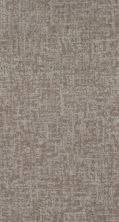 Shaw Floors Value Collections Fine Structure Net Cold Winter 00126_5E370