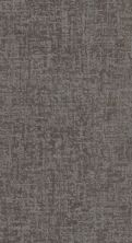 Shaw Floors Value Collections Fine Structure Net Grounded Gray 00536_5E370