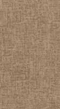 Shaw Floors Value Collections Fine Structure Net Natural Beauty 00721_5E370
