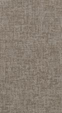 Shaw Floors Value Collections Fine Structure Net Stucco 00724_5E370