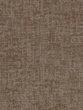 Shaw Floors Value Collections Fine Structure Net Tumbleweed 00749_5E370