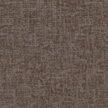 Shaw Floors Value Collections Fine Structure Net Ridgeview 00751_5E370