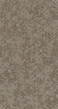 Shaw Floors Value Collections Free Spirit Net Stucco 00724_5E371