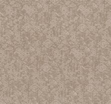Shaw Floors Value Collections Free Spirit Net Sandstone 00743_5E371