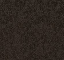 Shaw Floors Value Collections Free Spirit Net Burma Brown 00752_5E371