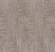 Shaw Floors Value Collections Insightful Journey Net Cold Winter 00126_5E372