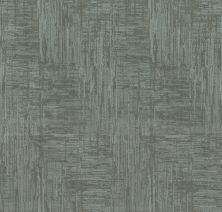 Shaw Floors Value Collections Insightful Journey Net Waters Edge 00307_5E372