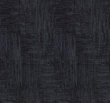 Shaw Floors Value Collections Insightful Journey Net Deep Sea 00433_5E372