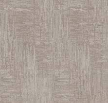 Shaw Floors Value Collections Insightful Journey Net Minimal 00514_5E372