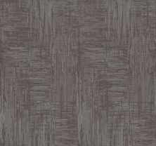 Shaw Floors Value Collections Insightful Journey Net Grounded Grey 00536_5E372