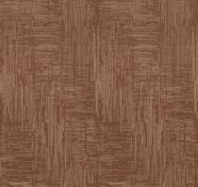 Shaw Floors Value Collections Insightful Journey Net Sunbaked 00650_5E372