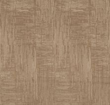 Shaw Floors Value Collections Insightful Journey Net Natural Beauty 00721_5E372