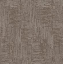 Shaw Floors Value Collections Insightful Journey Net Stucco 00724_5E372