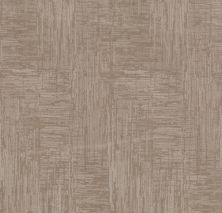 Shaw Floors Value Collections Insightful Journey Net Sandstone 00743_5E372