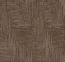Shaw Floors Value Collections Insightful Journey Net Tumbleweed 00749_5E372