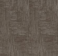Shaw Floors Value Collections Insightful Journey Net Ridgeview 00751_5E372