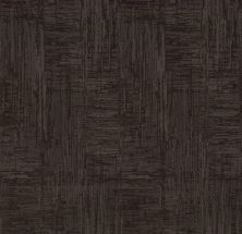 Shaw Floors Value Collections Insightful Journey Net Burma Brown 00752_5E372