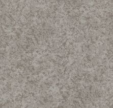 Shaw Floors Value Collections State Of Mind Net Cold Winter 00126_5E373