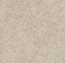 Shaw Floors Value Collections State Of Mind Net Delicate Cream 00156_5E373