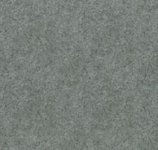 Shaw Floors Value Collections State Of Mind Net Waters Edge 00307_5E373